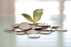 Small Fundraising Growth
